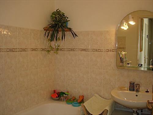Vente appartement t3 chateau gombert technopole marseille 13eme 13013 13